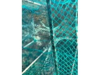 Одностенные рыболовные сети: характеристики и преимущества